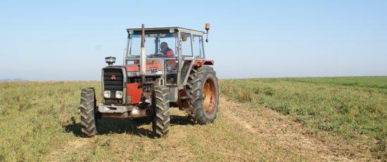 Massey Ferguson MF 1132, un tracteur incompris